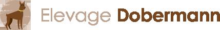 Elevage Dobermann